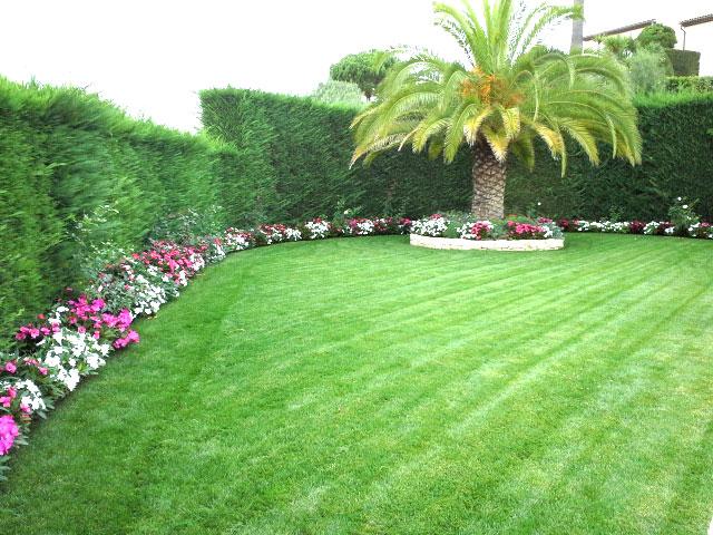 Gazon de placage-jardin
